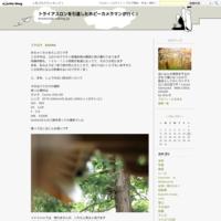 東京オリンピックチケット当選!(男バス) - トライアスロンを引退したホビーカメラマンが行く!