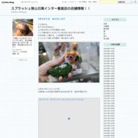 29年7月15日 アメリカモモンガ - スプラッシュ狭山日高インター飯能店の店舗情報!!