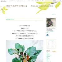 さにべるスタッフ愛用品 - さにべるスタッフblog     -Sunny Day's Garden-