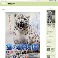 遊ぶフブキ - 動物園放浪記