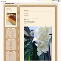 杏仁豆腐風… - miyumiyu cafe