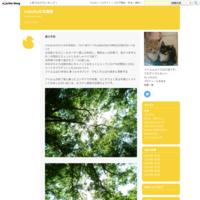 春の光 - zubollaな写真帳