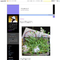 佐藤錦のチョコヨーグルトムース♪ - アリスのトリップ