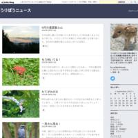 6月の鎌倉 - うりぼうニュース