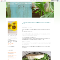2017年4月の出店予定 - ヒマワリ日和 ~粉のアトリエ コナリエ管理人の日常の小さな気づきの記録~