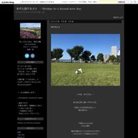 インスタ連動 - あすに架けるメシ ~Bridge to a brand-new day