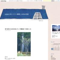 風不死岳登山2021.6.5 - yogaとカントリー雑貨☆cotton日記