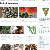 秋色アジサイのドライフラワー - 季の花小屋・Pastelgreen