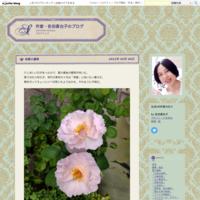 たび重なる試練 - 作家・佐伯香也子のブログ