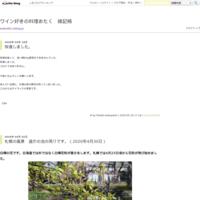 朝日新聞11月8日(水)から「グサリと来た笑子の一言」柳家小三治 - ワイン好きの料理おたく 雑記帳