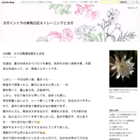 93鞍目@カナキャン収縮駈歩&正反動 - ヨガイントラの乗馬日記