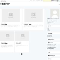 11月29日課題 - 中国語ブログ