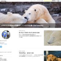 今日の円山 2018/11/11 - メタのマクロ視点な奇跡なんてシロクマの為 -2nd season-
