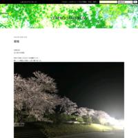 ブログ開設しました - CEREMO-STAFF-BLOG