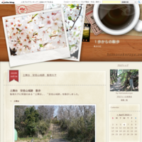 山の辺の道狭井神社から竹之内環濠集落まで - 1歩からの散歩